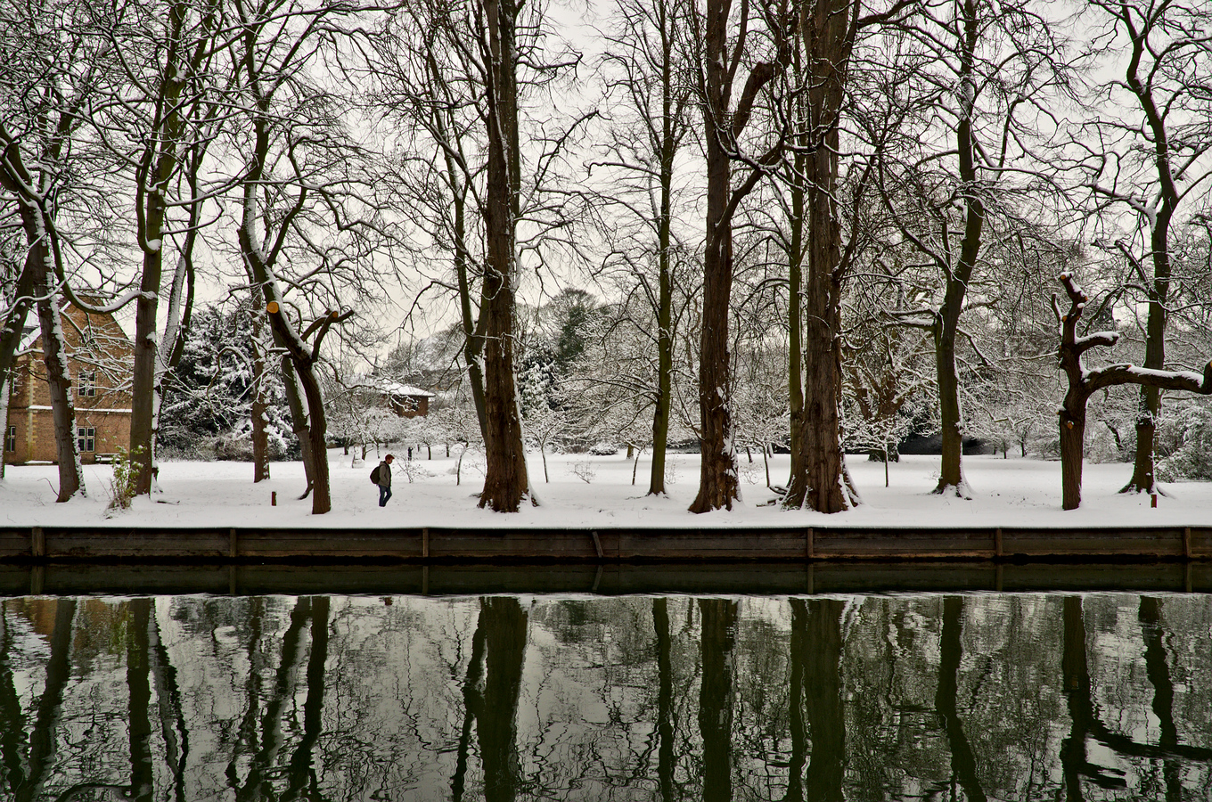 along river cam cambridge snow trees reflection water solitary figure